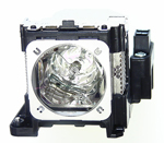 <b>Genuine EIKI Brand</b> EIKI LC-XS31 replacement lamp